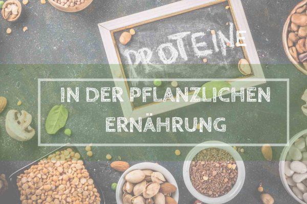 Pflanzliche Proteine: wie du als Veganer deinen Eiweiß-Bedarf deckst